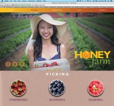 Picking page for Honey Farm